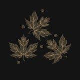 Foglie di acero di autunno eseguite Immagini Stock