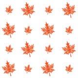 Foglie di acero poligonali di autunno di vettore senza cuciture Immagine Stock Libera da Diritti