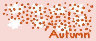 Foglie di acero sull'autunno di parola, insegna di vettore di tema di autunno Immagine Stock Libera da Diritti