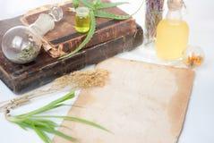 Foglie di Aloea con le erbe Fotografie Stock Libere da Diritti