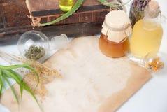 Foglie di Aloea con le erbe Fotografia Stock Libera da Diritti