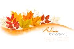Foglie di Autumn Nature Background With Colorful illustrazione di stock