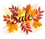Foglie di Autumn Sales Banner With Colorful royalty illustrazione gratis