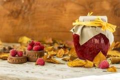 Foglie di Autumn Yellow con l'inceppamento di lampone fotografie stock