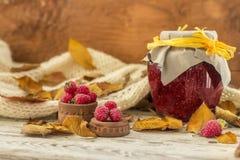 Foglie di Autumn Yellow con l'inceppamento di lampone immagini stock libere da diritti