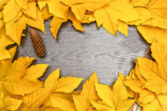 Foglie di Autumn Yellow Maple sul bordo di legno nero Fotografia Stock Libera da Diritti