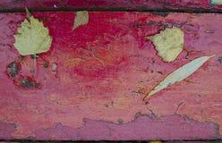 Foglie di autunno cadute sul bordo di legno dipinto anziano Priorità bassa di autunno Immagini Stock