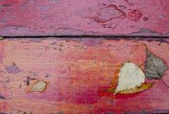 Foglie di autunno cadute sul bordo di legno dipinto anziano Priorità bassa di autunno Immagine Stock