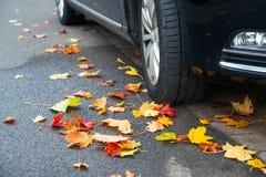 Foglie di autunno con la ruota di automobile Immagine Stock