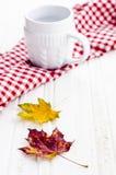 Foglie di autunno con la tazza bianca immagini stock