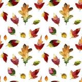 Foglie di autunno dell'acquerello Reticolo senza giunte Immagine Stock Libera da Diritti
