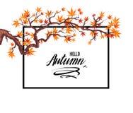 Foglie di autunno della pagina royalty illustrazione gratis