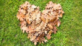 Foglie di autunno di amore Fotografia Stock Libera da Diritti