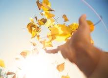 Foglie di autunno di lancio della mano nel cielo Fotografie Stock Libere da Diritti