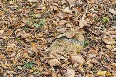 Foglie di autunno e spazzatrice rovesciate del cespuglio immagini stock libere da diritti