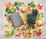 Foglie di autunno ed accessori di modo Disposizione piana Fotografia Stock Libera da Diritti