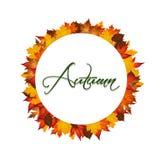 Foglie di autunno intorno al cerchio Fotografia Stock Libera da Diritti