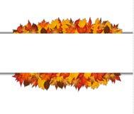 Foglie di autunno intorno al rettangolo in bianco Fotografie Stock