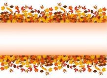 Foglie di autunno intorno al rettangolo in bianco Fotografia Stock Libera da Diritti