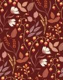 Foglie di autunno senza cuciture floreali di caduta del modello di autunno Immagine Stock Libera da Diritti
