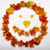 Foglie di autunno sorridente Immagini Stock Libere da Diritti