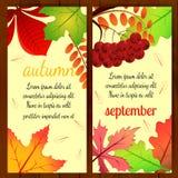 Foglie di autunno su fondo di legno Illustrazione di vettore Immagini Stock