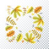 Foglie di autunno su un fondo trasparente Blocco per grafici di autunno illustrazione di stock