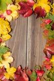 Foglie di autunno sulla tavola Immagini Stock