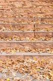 Foglie di autunno sulle scala a terrazze della roccia fotografia stock