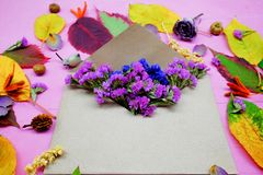Foglie di autunno variopinte isolate con i fiori e busta su fondo porpora Fotografie Stock Libere da Diritti