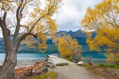 Foglie di autunno variopinte nel lago Glenorchy, Nuova Zelanda Fotografie Stock Libere da Diritti