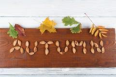 Foglie di autunno variopinte su fondo di legno, spazio della copia per testo Vista superiore Fotografie Stock Libere da Diritti