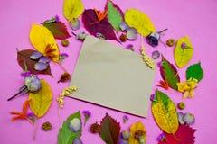 foglie di autunno variopinte su fondo porpora con la busta ed i fiori Fotografie Stock Libere da Diritti