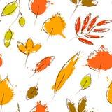 Foglie di autunno variopinte sul modello senza cuciture di lerciume bianco, vettore Fotografia Stock Libera da Diritti