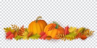 Foglie di autunno di vettore, modello della zucca illustrazione vettoriale