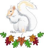 Foglie di caduta e dello scoiattolo Immagine Stock Libera da Diritti