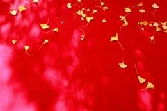 Foglie di caduta su tessuto rosso Fotografia Stock