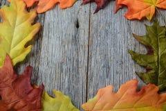 Foglie di caduta su un fondo di legno rustico Fotografie Stock