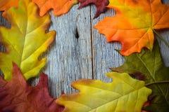 Foglie di caduta su un fondo di legno rustico Fotografia Stock Libera da Diritti