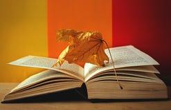 Foglie di giallo e del libro del concetto di autunno Fotografia Stock Libera da Diritti