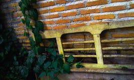 Foglie di legno della parete Immagine Stock