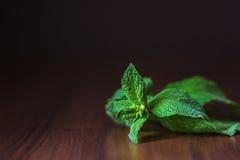 Foglie di menta verdi fresche sulla tavola di legno Fotografia Stock
