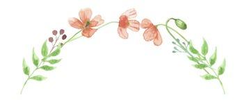 Foglie di nozze dell'arco di Poppy Garland Wreath Leaf Spring Summer dell'acquerello Fotografia Stock Libera da Diritti