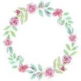 Foglie di nozze di Garland Summer Roses Red Wreath dell'acquerello Fotografia Stock