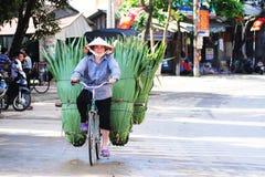 Foglie di palma di trasporto della donna in bicicletta Fotografia Stock