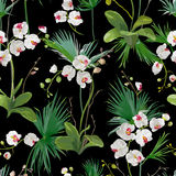 Foglie di palma e fondo tropicali dei fiori dell'orchidea Reticolo senza giunte royalty illustrazione gratis