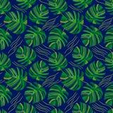 Foglie di palma geometriche Fotografia Stock
