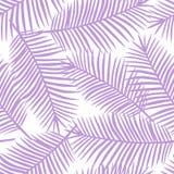 Foglie di palma porpora su un fondo bianco Hawai tropicale esotica Fotografia Stock