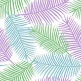 Foglie di palma verdi e blu porpora su un fondo bianco t esotica Immagine Stock Libera da Diritti