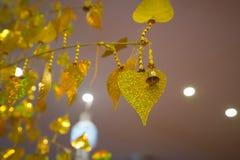 Foglie di pho dell'oro che appendono sull'albero dorato Immagini Stock